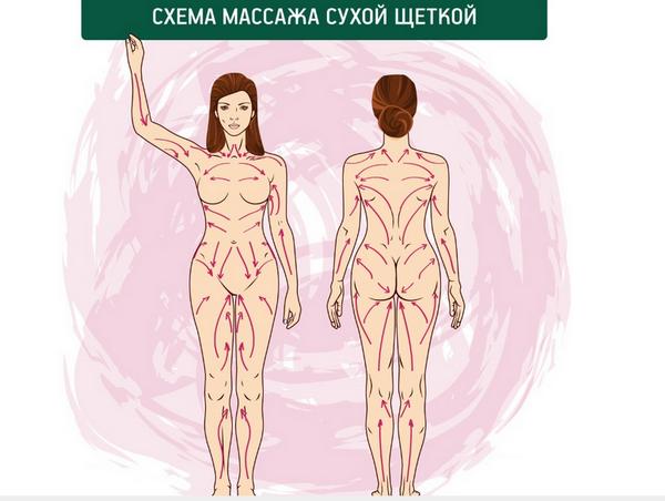Схема антицеллюлитного массажа сухой щеткой